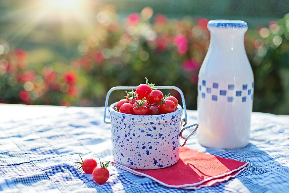 mlieko,rajčiny, piknik